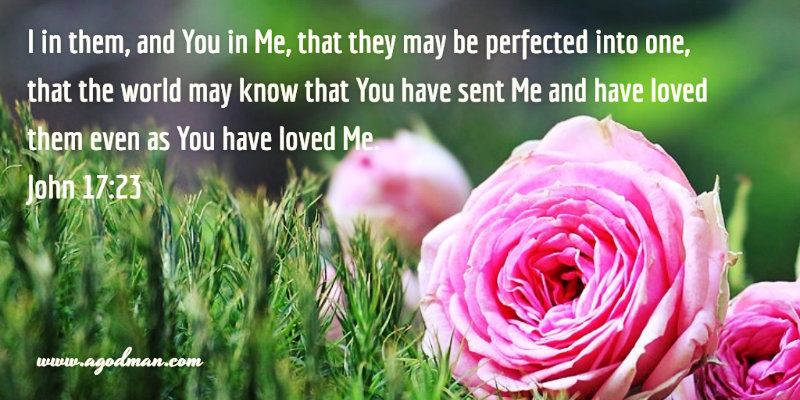 John 17:23 I in them, and You in Me, that they may be perfected into one, that the world may know that You have sent Me and have loved them even as You have loved Me.
