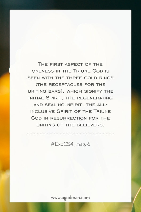 The first aspect of the oneness in the Triune God is seen with the three gold rings (the receptacles for the uniting bars), which signify the initial Spirit, the regenerating and sealing Spirit, the all-inclusive Spirit of the Triune God in resurrection for the uniting of the believers. #ExoCS4, msg. 6