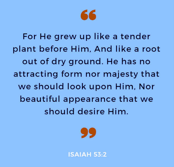 Isaiah 53:2 For He grew up like a tender plant before Him, And like a root out of dry ground. He has no attracting form nor majesty that we should look upon Him, Nor beautiful appearance that we should desire Him.