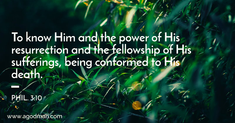 Phil. 3:10 To know Him and the power of His resurrection and the fellowship of His sufferings, being conformed to His death.