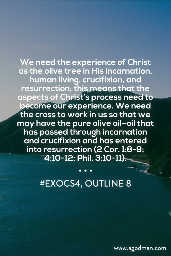 We need the experience of Christ as the olive tree in His incarnation, human living, crucifixion, and resurrection; this means that the aspects of Christ's process need to become our experience. We need the cross to work in us so that we may have the pure olive oil—oil that has passed through incarnation and crucifixion and has entered into resurrection (2 Cor. 1:8-9; 4:10-12; Phil. 3:10-11). #ExoCS4, outline 8