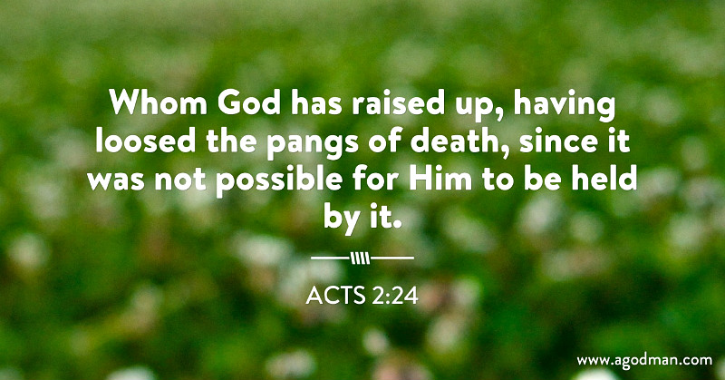 Acts 2:24 Whom God has raised up, having loosed the pangs of death, since it was not possible for Him to be held by it.