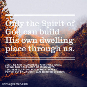 Having the Wisdom, Understanding, and Knowledge of the Spirit to Build up the Church