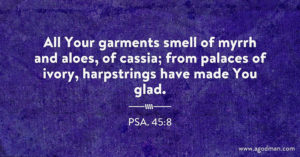 Praising Christ the King in His Kingdom and in the Sweetness of His Virtues (Psa. 45)