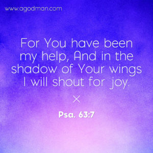 We need to Stop our Doing to Enjoy the Grace of God and Soar above all and be Covered