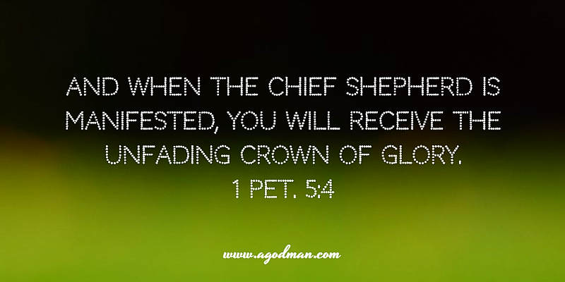 1 Pet. 5:4 And when the Chief Shepherd is manifested, you will receive the unfading crown of glory.