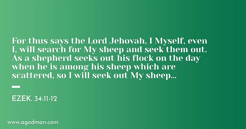Ezek. 34:11-12 For thus says the Lord Jehovah, I Myself, even I, will search for My sheep and seek them out. As a shepherd seeks out his flock on the day when he is among his sheep which are scattered, so I will seek out My sheep...