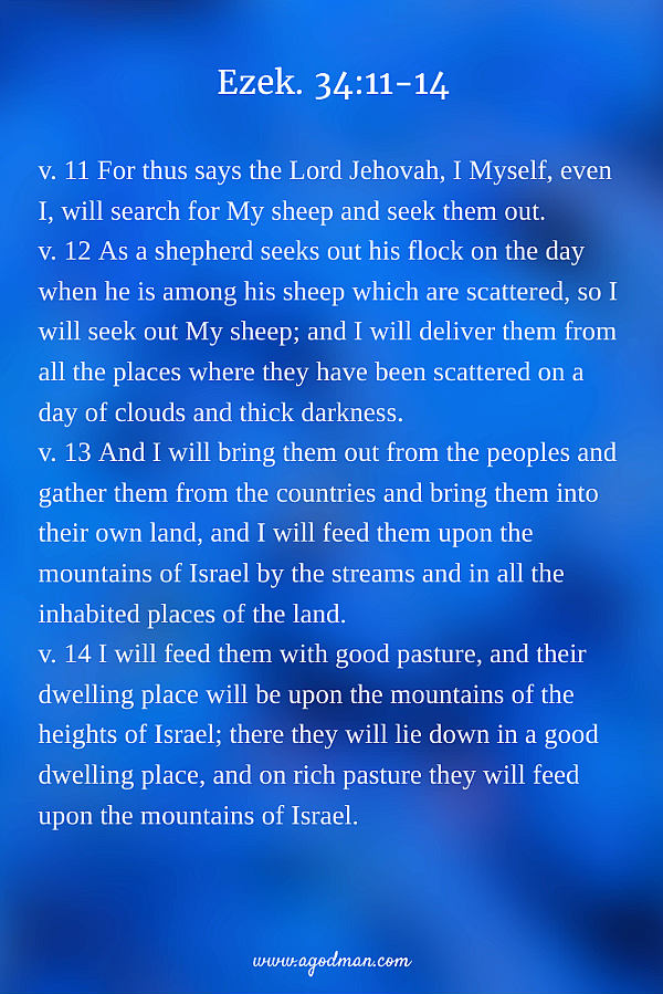 Ezek. 34:11-14 v. 11 For thus says the Lord Jehovah, I Myself, even I, will search for My sheep and seek them out. v. 12 As a shepherd seeks out his flock on the day when he is among his sheep which are scattered, so I will seek out My sheep; and I will deliver them from all the places where they have been scattered on a day of clouds and thick darkness. v. 13 And I will bring them out from the peoples and gather them from the countries and bring them into their own land, and I will feed them upon the mountains of Israel by the streams and in all the inhabited places of the land. v. 14 I will feed them with good pasture, and their dwelling place will be upon the mountains of the heights of Israel; there they will lie down in a good dwelling place, and on rich pasture they will feed upon the mountains of Israel.