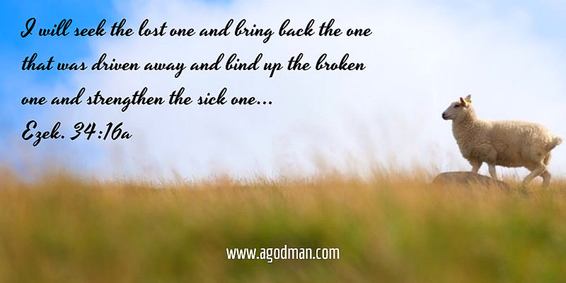 Ezek. 34:16a I will seek the lost one and bring back the one that was driven away and bind up the broken one and strengthen the sick one...