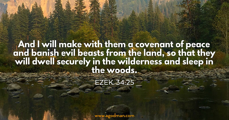 Ezek. 34:25 And I will make with them a covenant of peace and banish evil beasts from the land, so that they will dwell securely in the wilderness and sleep in the woods.
