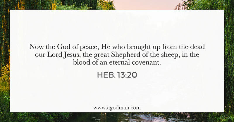Heb. 13:20 Now the God of peace, He who brought up from the dead our Lord Jesus, the great Shepherd of the sheep, in the blood of an eternal covenant.
