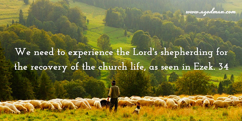 We need to experience the Lord's shepherding for the recovery of the church life, as seen in Ezek. 34