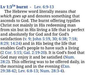 We need to Experience Christ, take Him as our Burnt Offering, and know the Cross