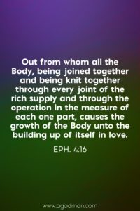 We need to Live the Body Life and Keep every Principle of the Body in the Church Life