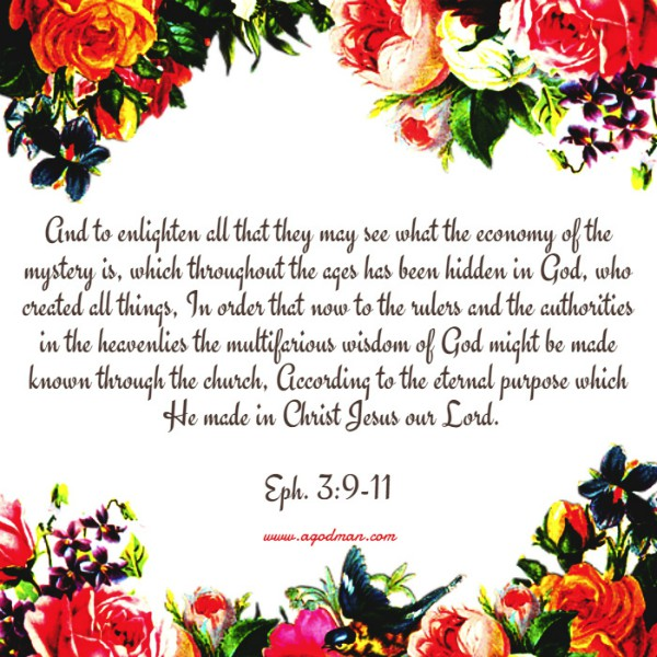 Eph. 3:9-11 And to enlighten all that they may see what the economy of the mystery is, which throughout the ages has been hidden in God, who created all things, In order that now to the rulers and the authorities in the heavenlies the multifarious wisdom of God might be made known through the church, According to the eternal purpose which He made in Christ Jesus our Lord.