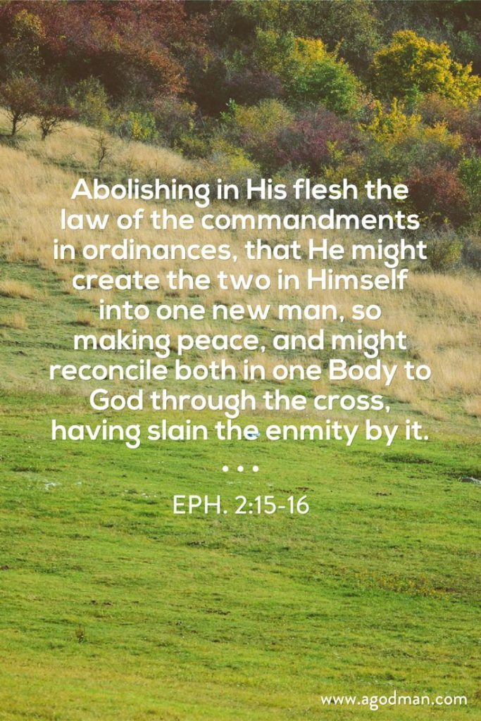Eph. 2:15-16 Abolishing in His flesh the law of the commandments in ordinances, that He might create the two in Himself into one new man, so making peace, and might reconcile both in one Body to God through the cross, having slain the enmity by it.