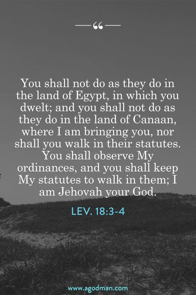 Lev. 18:3-4 You shall not do as they do in the land of Egypt, in which you dwelt; and you shall not do as they do in the land of Canaan, where I am bringing you, nor shall you walk in their statutes. You shall observe My ordinances, and you shall keep My statutes to walk in them; I am Jehovah your God.
