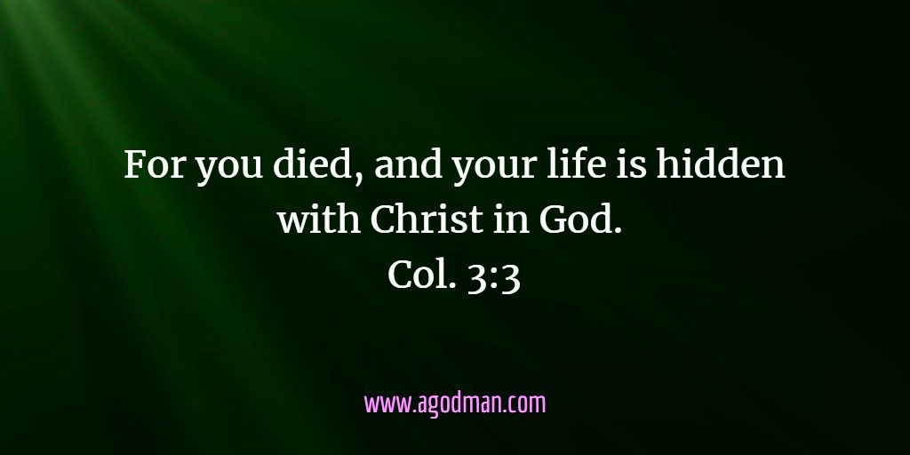 Image result for CHRIST THE HEAD OF YOUR LIFE