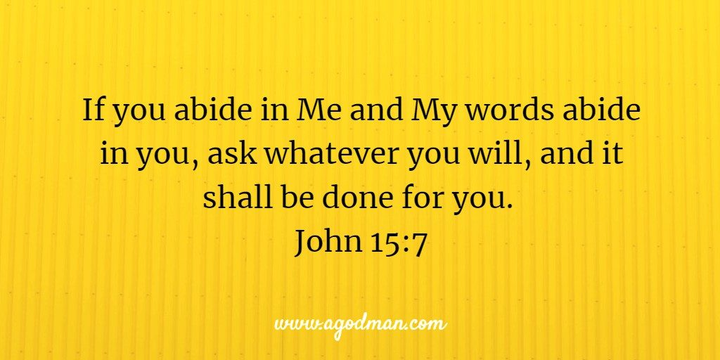 Use the word my lord in a sentence