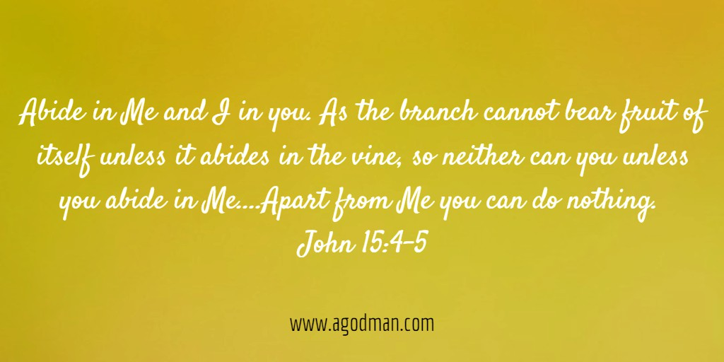 Abide in Me and I in you. As the branch cannot bear fruit of itself unless it abides in the vine, so neither can you unless you abide in Me....Apart from Me you can do nothing. John 15:4-5